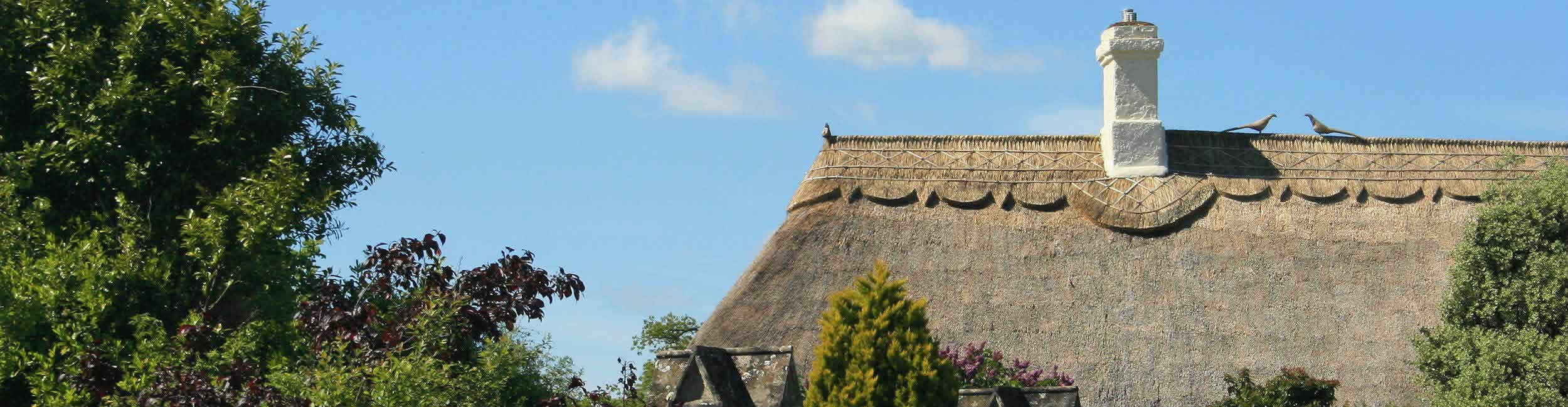 Devon Rose Lettings and Property Management - thatched roof